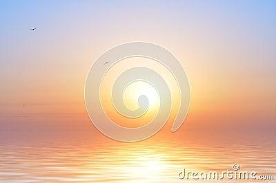 Salida del sol y pájaros del océano