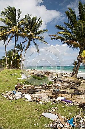 Sallie beach litter corn island nicara