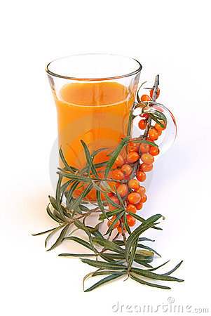 Free Sallow Thorn Juice 01 Royalty Free Stock Photography - 6316747
