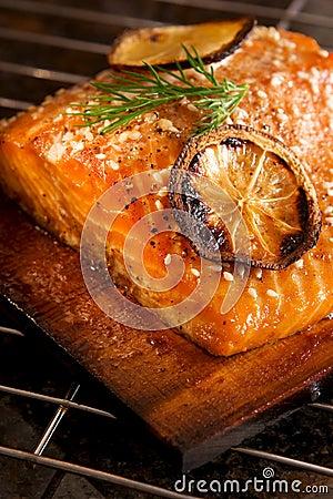 Free Salmon Stock Images - 5150974