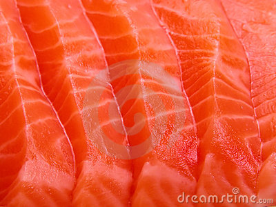 Salmon meat close-up