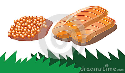 Salmon roe and salmon sashimi in vector