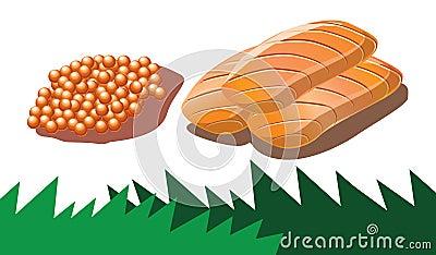 Salmon roe and salmon sashimi in vector