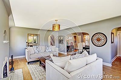 salon gris clair avec les sofas et la chemin e blancs. Black Bedroom Furniture Sets. Home Design Ideas
