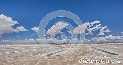 Salinas Grandes salt basins