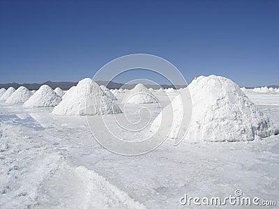 Salt Desert