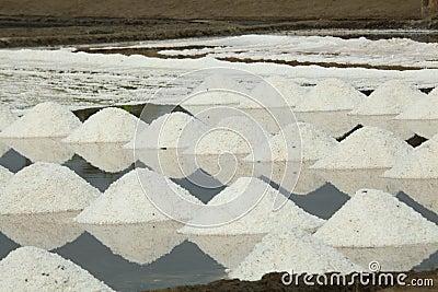 Salt Harvesting - Thailand