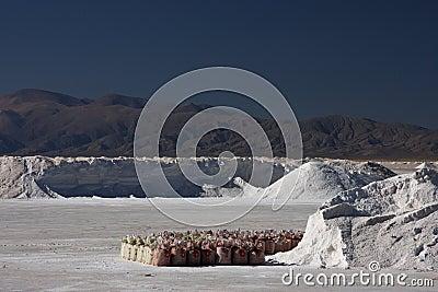 Salt industries