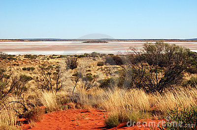 Salt Lake Amadeus and spinifex Editorial Photography
