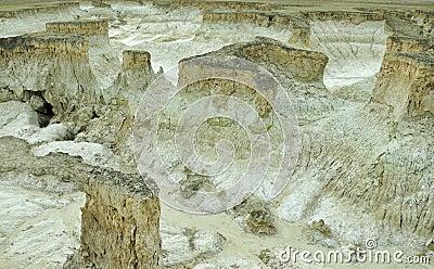 Salt land background