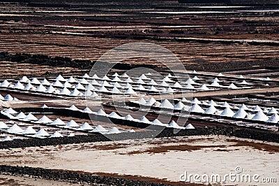 Salt Piles On A Saline