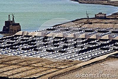 Salt piles on a saline exploration