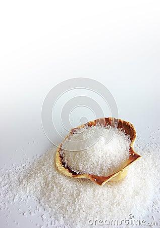 Salt on Shell