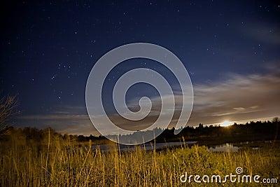 Salt Water Marsh Under Stars and Moon