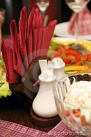 Saltcellar and napkins on the served table