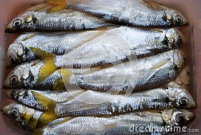 The salted fish-pelada
