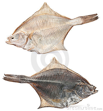 Salted flatfish