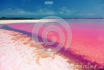 Salty lake shore