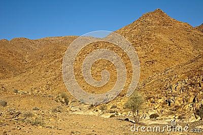 Salvaje desierto-como paisaje en el Richtersveld
