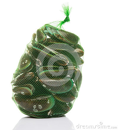 Free Salwater Mussel In A Net Sack II Royalty Free Stock Photo - 41214145