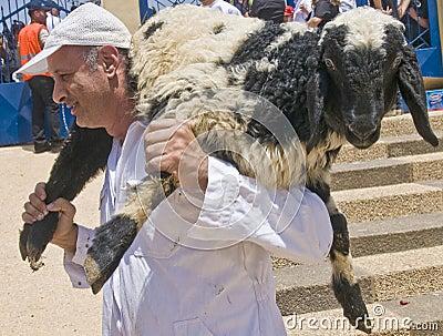 Samaritan Passover sacrifice Editorial Photo