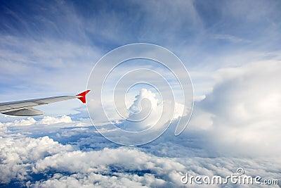 Samolotu skrzydło