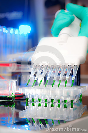 Sample load with multichannel pipette
