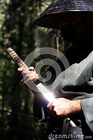 Free Samurai Stock Images - 3035354
