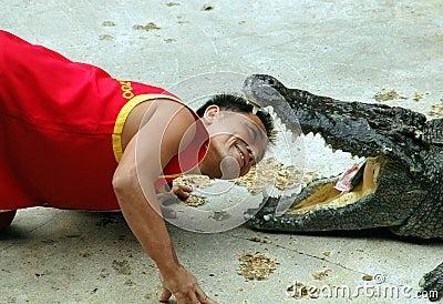 Samut Prakan, Thailand: Man with Crocodile Editorial Stock Photo