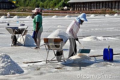 Samut Songkhram, Thailand: Harvesting Sea Salt Editorial Stock Image