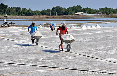 Samut Songkhram, Thailand: Sea Salt Flats Editorial Photography