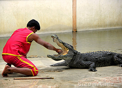 Samutprakan Crocodile Farm and Zoo 6