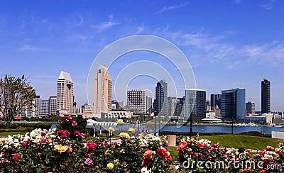 San Diego skyline by day