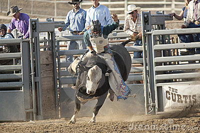 San Dimas Bull Riding Editorial Image