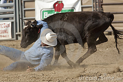 San Dimas Rodeo Steer Wrestling Editorial Stock Image