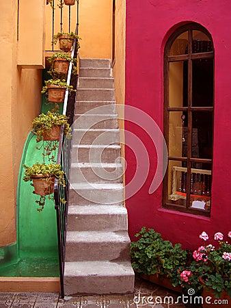 San Miguel De Allende Courtyard