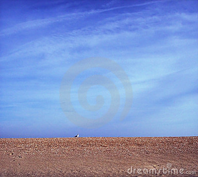 Free Sand And Sky Stock Image - 4058141