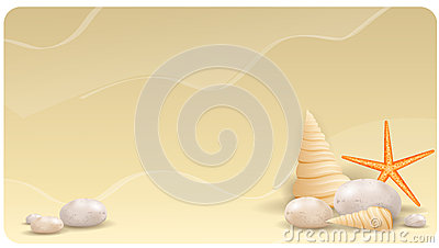 Sand background with pebble stones, seashells and