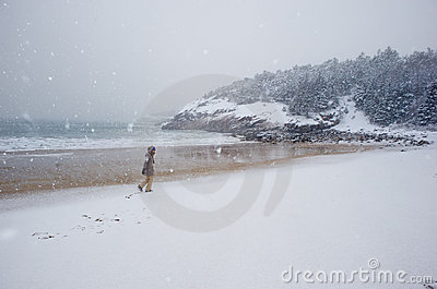 Sand Beach During a Snow Storm