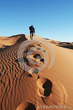 Free Sand Desert Stock Photo - 4077500