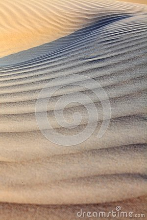Sand desert surface