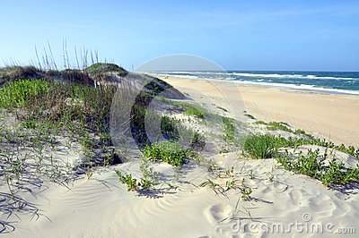 Sand Dune in Cape Hatteras, North Carolina