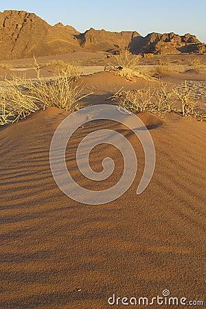 Mini Sand Dune