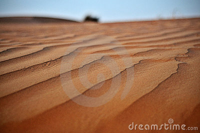 Sand Dune in Dubai, United Arab Emirates