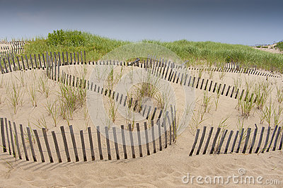 Sand dune erosion protection