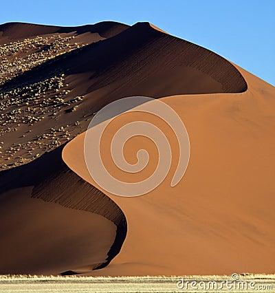 Free Sand Dune In The Namib Desert Royalty Free Stock Photos - 14097988