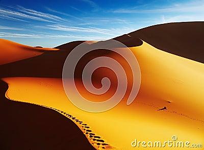 Sand dune at sunrise, Sahara Desert