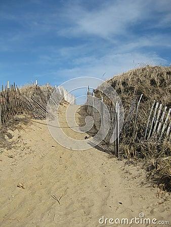 Free Sand Dunes Stock Photo - 14598540
