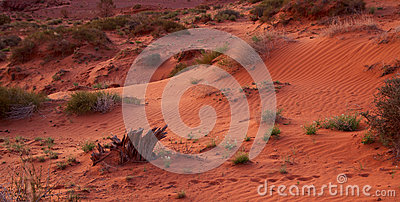Sand Dunes Stock Photo - Image: 26069200