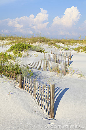 Free Sand Dunes And Sea Oats On A Pristine Florida Beach Stock Photo - 43831530